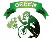 The Green Monkey Collective