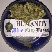 Blue City Diesel